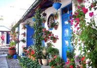La Unesco reconoce la Fiesta de los Patios de Córdoba.