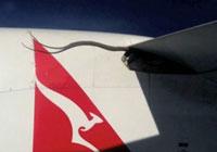 Una pitón se cuela en un vuelo de Quantas.