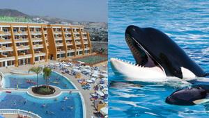 Loro Parque y hoteles Tenerife