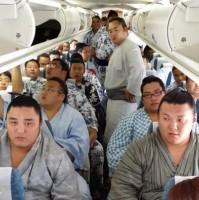 Luchadores de sumo en un avión de JAL