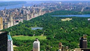 Riu Hotels en Nueva York