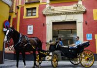 Hotel Boutique Palacio Pinello, Carlos Herrera